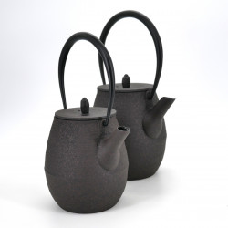 japanese high prestige brown cast iron teapot chûshin kôbô NATSUME