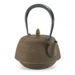 brown Japanese cast iron teapot Iwachu - NAMBU Arare