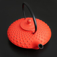 Cast iron teapots from Japan
